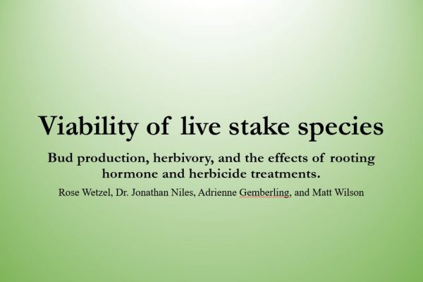 Viability of live stake species: bud production, herbivory, and the effects of rooting hormone and herbicide treatments