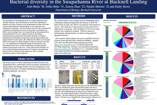 Bacterial diversity in the Susquehanna River and Bucknell Landing