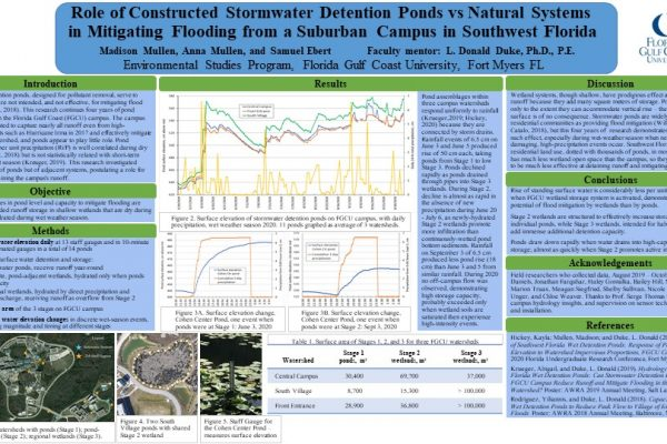 Role of Constructed Stormwater Detention Ponds vs Natural Systems  in Mitigating Flooding from a Suburban University Campus in Southwest Florida