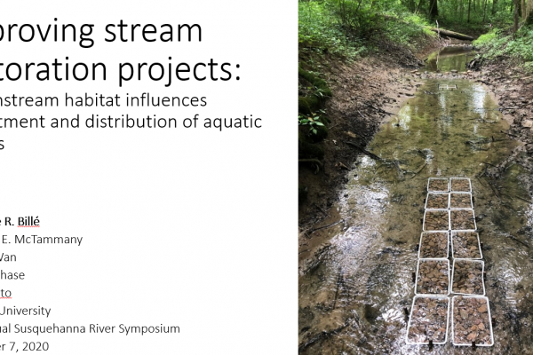 Improving stream restoration projects: how instream habitat influences recruitment and distribution of aquatic insects