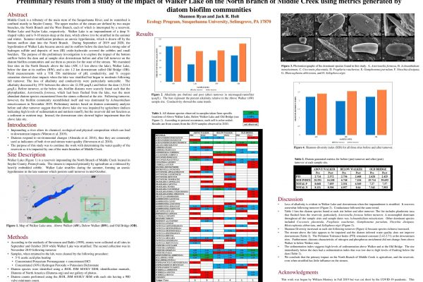 Preliminary results from a study of the impact of Walker Lake on the North Branch of Middle Creek using metrics generated by diatom biofilm communities