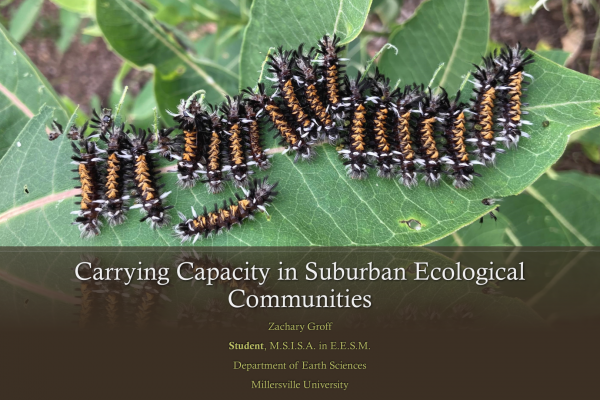 Carrying Capacity in Suburban Ecological Communities