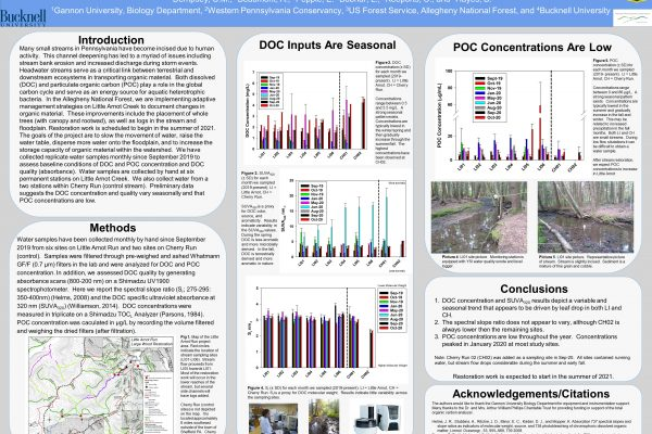 Pre-restoration summary of organic matter content in Little Arnot Creek, Allegheny National Forest