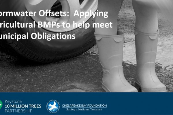 Stormwater Offsets:  Applying Agricultural BMPs to help meet Municipal Obligations